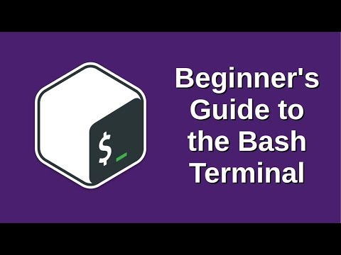 Beginner's Guide to the Bash Terminal